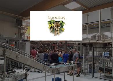 lupulus-brewery